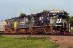 NS 7516 (H-GFDBRC)